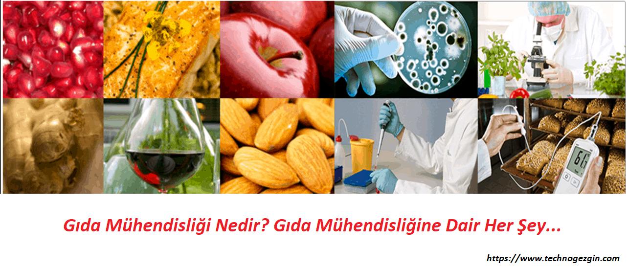 Gıda Mühendisliği Nedir ve Gıda Mühendisi Ne iş Yapar