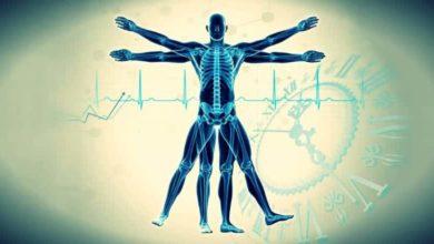 Biyolojik Saat Nedir Ne İşe Yarar Sağlık