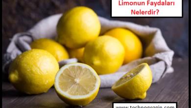 Limon Nedir? Limonun Faydaları Nelerdir?