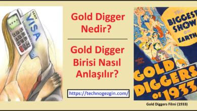 Gold Digger Nedir? Nasıl Anlaşılır?